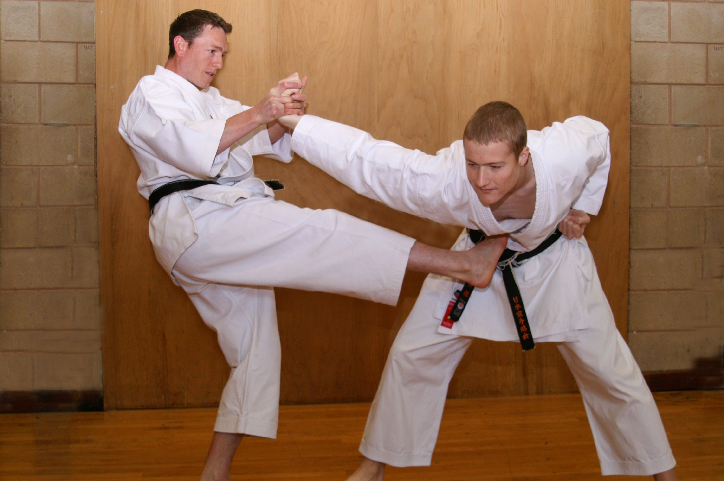 disadvantages of karate Here are 10 reasons to study and train mixed martial arts (mma) 1) training mixed martial arts (mma) will build confidence in you  when you know how to fight your mind is a little calmer, a little freer, and a little more relaxed.