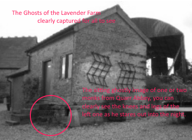 the ghosts of the lavender farm iow