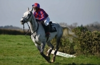IOW Grand National and Ashey Scurry