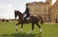 Osborne Horse Trials