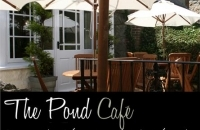 The Pond Cafe Presents Live music